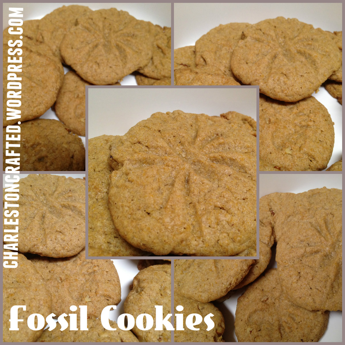 fossil cookies - charleston crafted