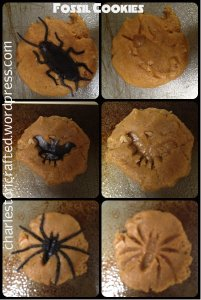 halloween fossil cookies - charleston crafted