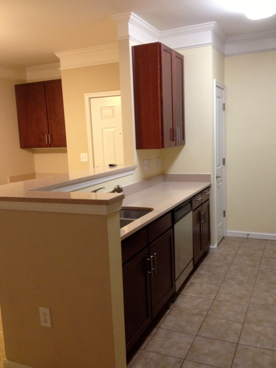 Kitchen Before - Charleston Crafted