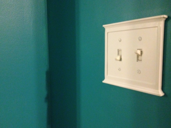 Light Switch in Guest Room - Charleston Crafted