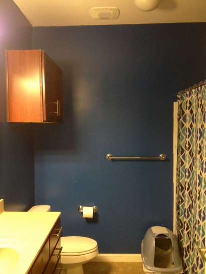 Painting Guest Bathroom